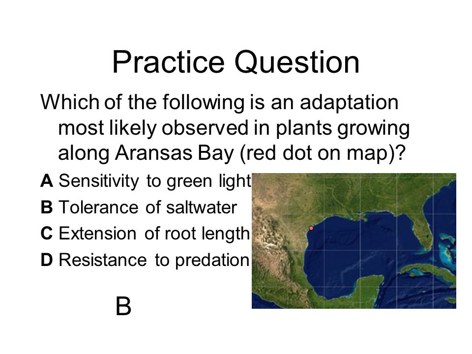 Practice Question Which of the following is an adaptation most likely observed in plants growing along Aransas Bay (red dot on map)