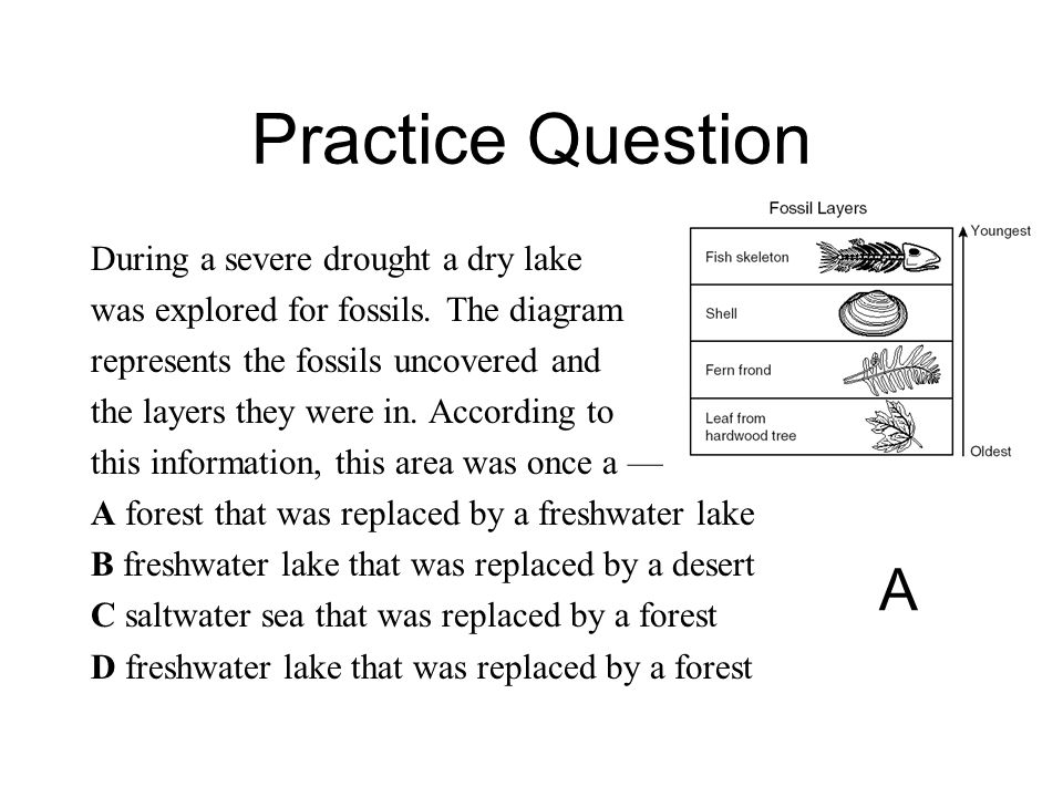 Practice Question A During a severe drought a dry lake