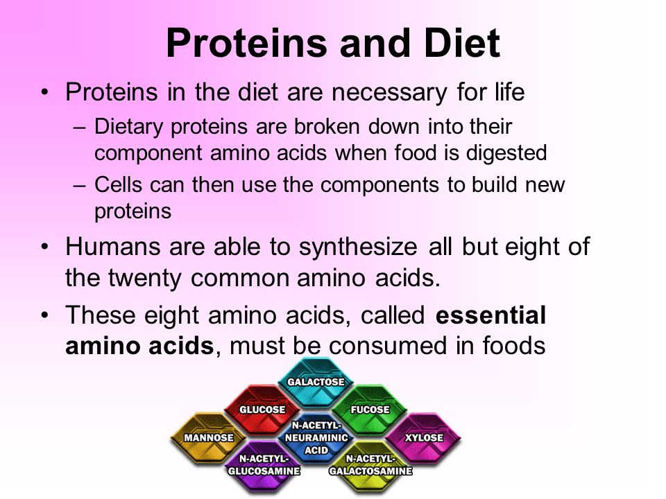 Chemical Basis of Life Organic Compounds - ppt video online download