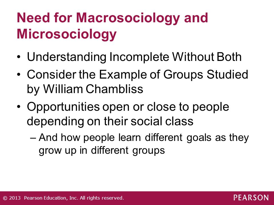 Need for Macrosociology and Microsociology