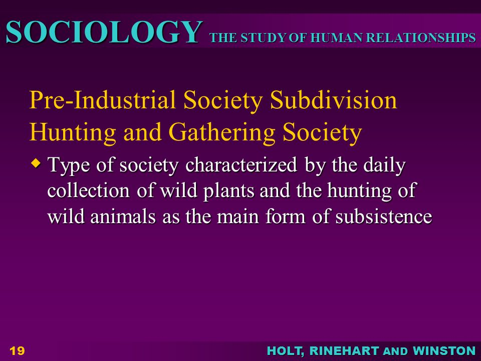 Pre-Industrial Society Subdivision Hunting and Gathering Society