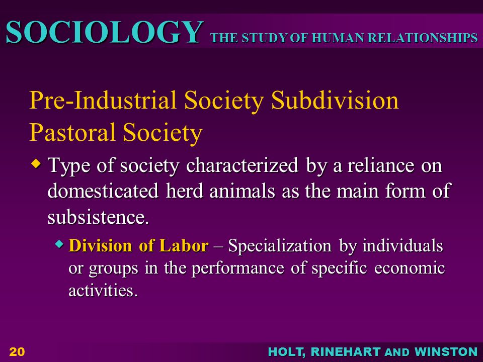 Pre-Industrial Society Subdivision Pastoral Society