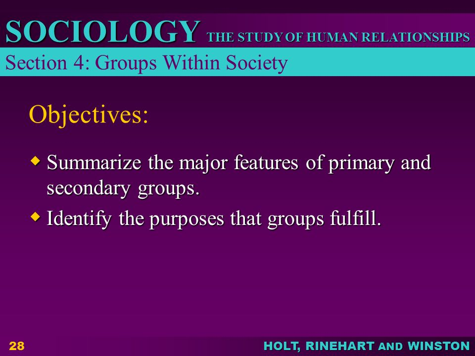 Objectives: Section 4: Groups Within Society
