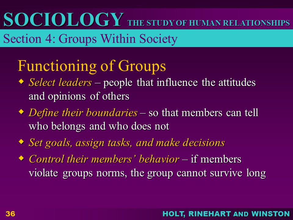 Functioning of Groups Section 4: Groups Within Society