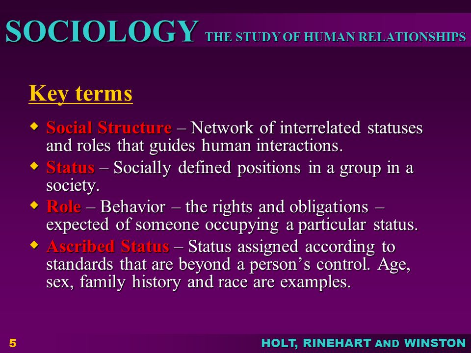 Key terms Social Structure – Network of interrelated statuses and roles that guides human interactions.