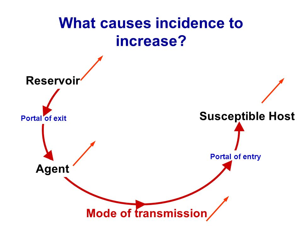What causes incidence to increase