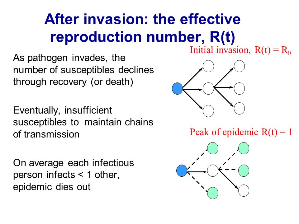 After invasion: the effective reproduction number, R(t)