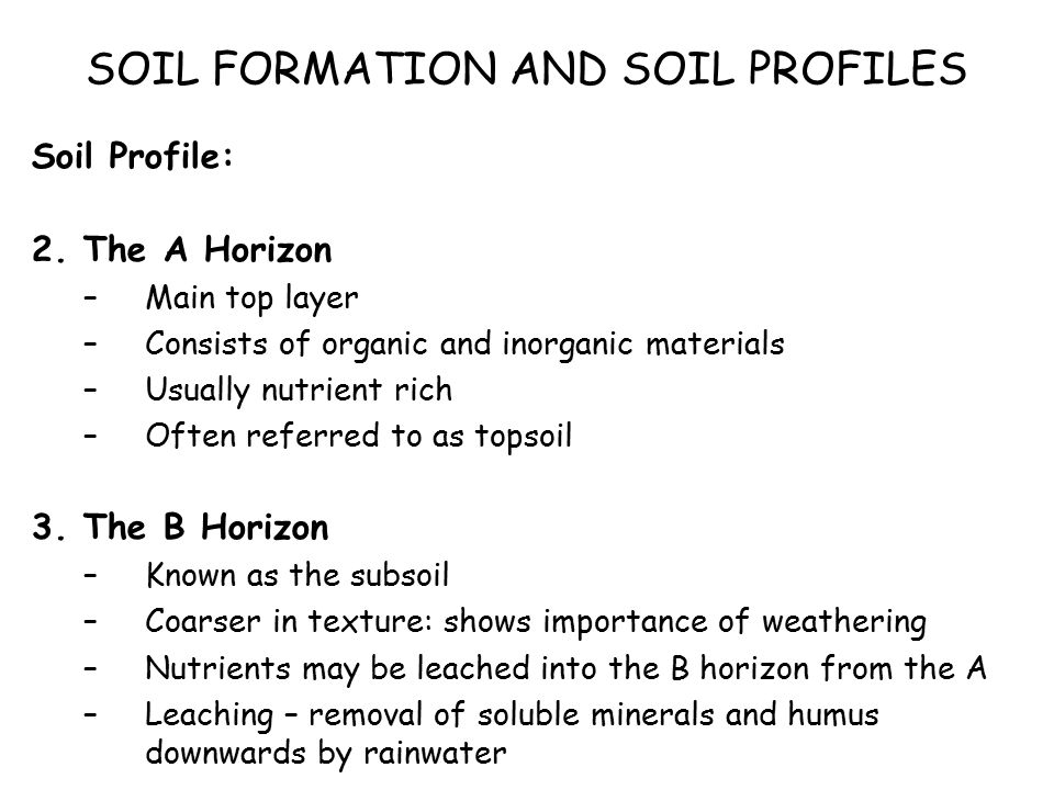 Biosphere soils soil profiles what is a soil what does for Importance of soil minerals