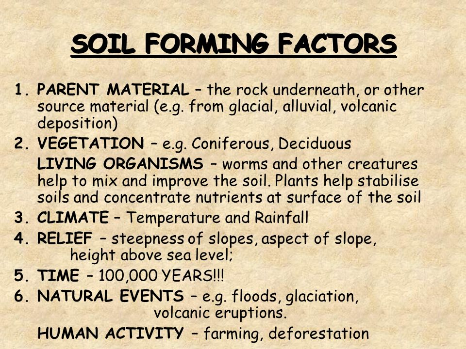 Biosphere soils soil profiles what is a soil what does for Soil forming factors