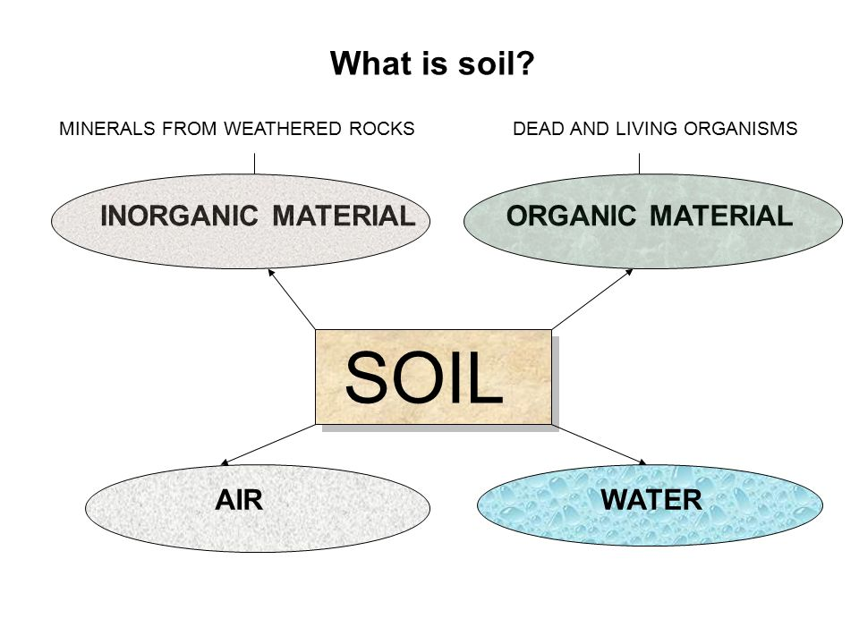Biosphere soils soil profiles what is a soil what does for Define organic soil