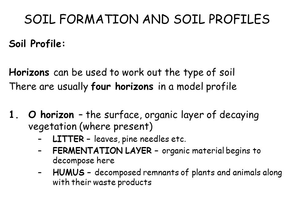 Biosphere soils soil profiles what is a soil what does for Meaning of soil formation