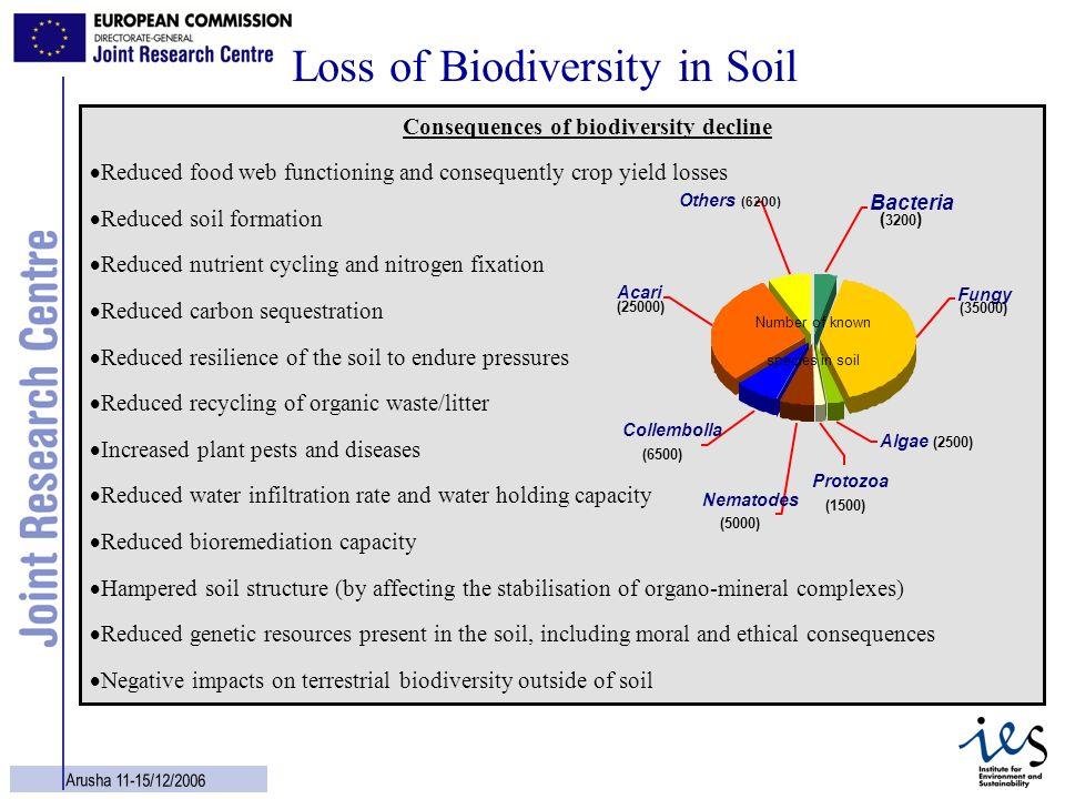 Loss of Biodiversity in Soil