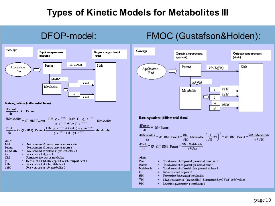 Types of Kinetic Models for Metabolites III