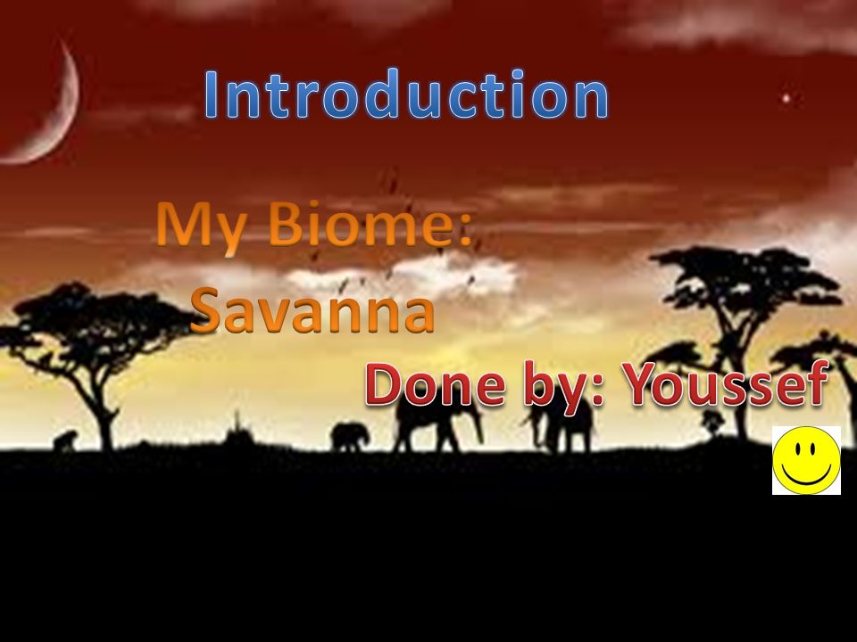 an introduction to the climate of the tropical savanna Large groups of similar ecosystems are 3-1-2010 treat the fam to 1 free month of an introduction to the climate of the tropical savanna youtube red century th.