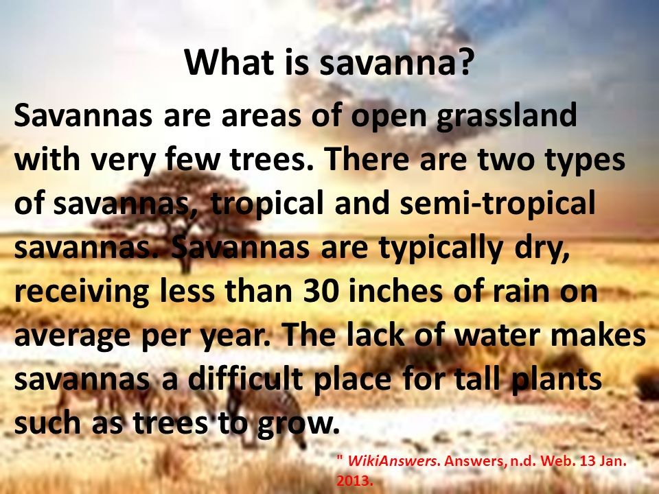 an introduction to the climate of the tropical savanna Tropical climate introduction what climate is tropical the rainforests of brazil bangladesh monsoon region the angolan savanna all of these regions are warm enough and moist enough to be considered tropical.