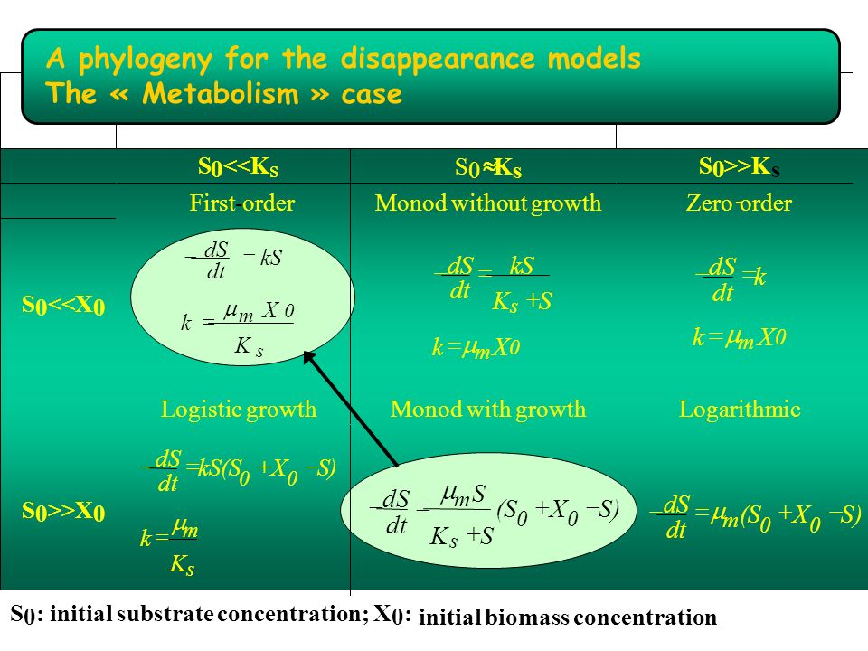 : initial substrate concentration; X initial biomass concentration