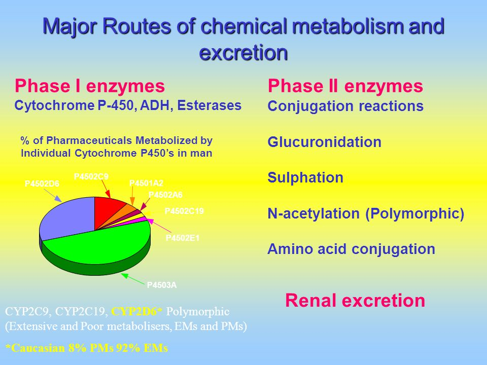 Major Routes of chemical metabolism and excretion