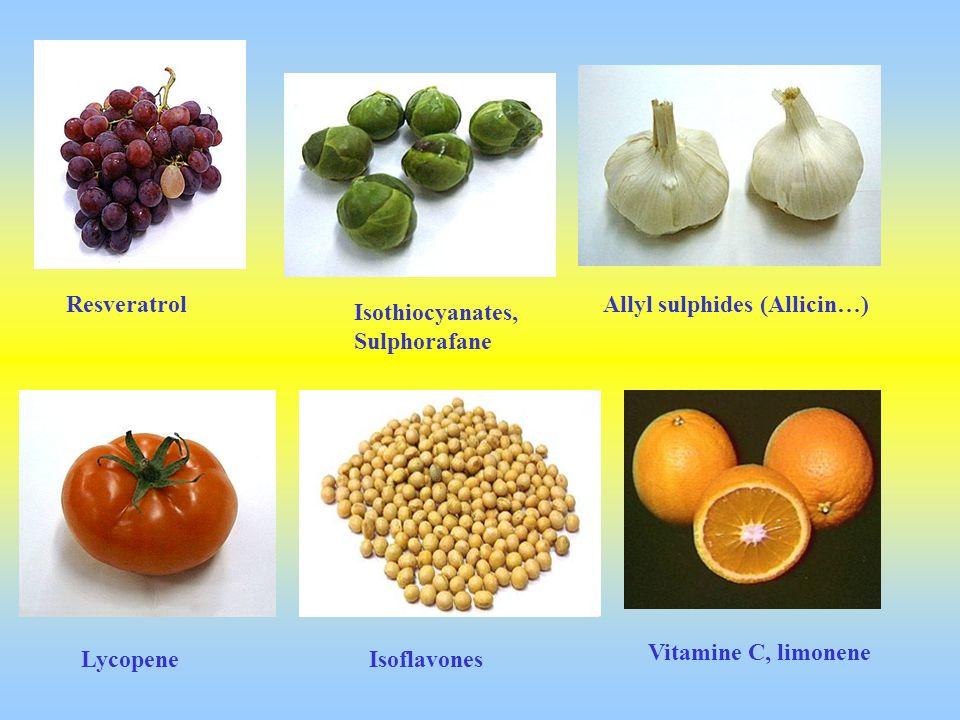 Resveratrol Allyl sulphides (Allicin…) Isothiocyanates,Sulphorafane. Vitamine C, limonene. Lycopene.