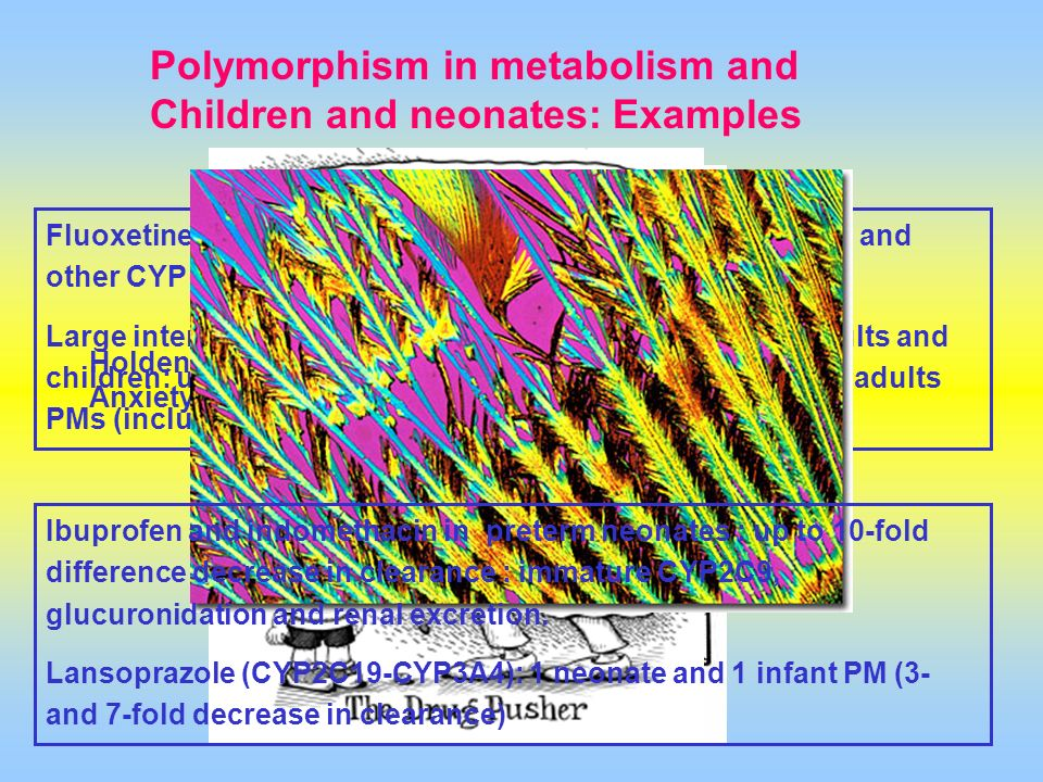 Polymorphism in metabolism and Children and neonates: Examples