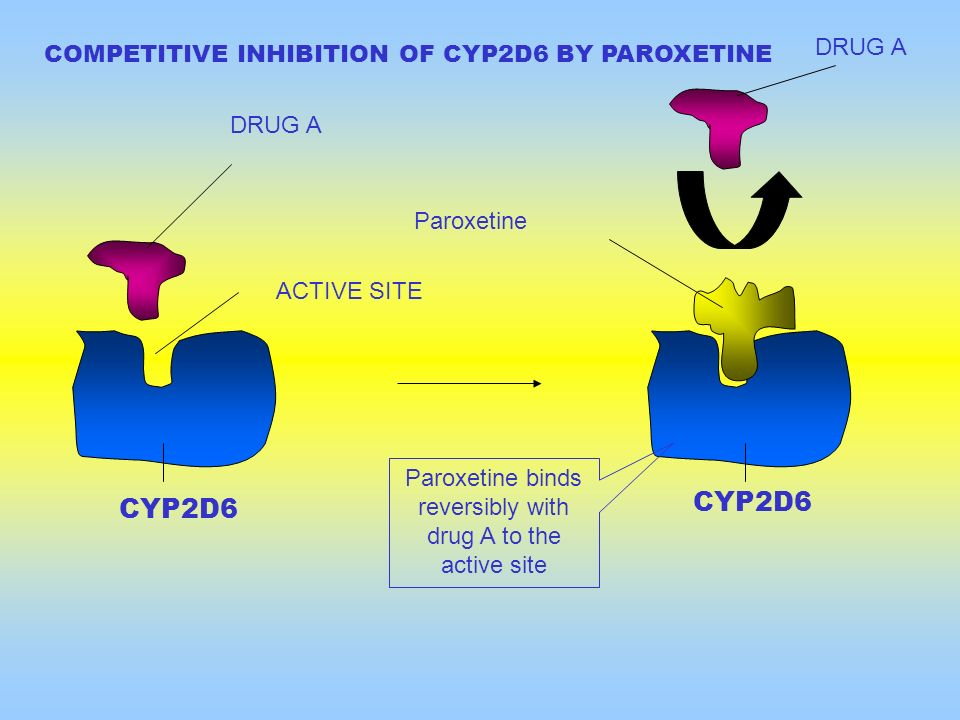 Paroxetine binds reversibly with drug A to the active site