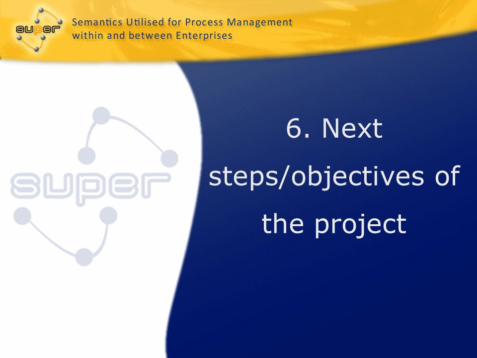6. Next steps/objectives of the project