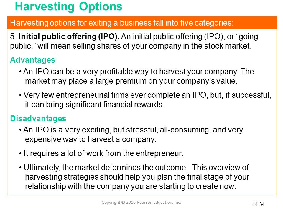 How do stock options work for a private company