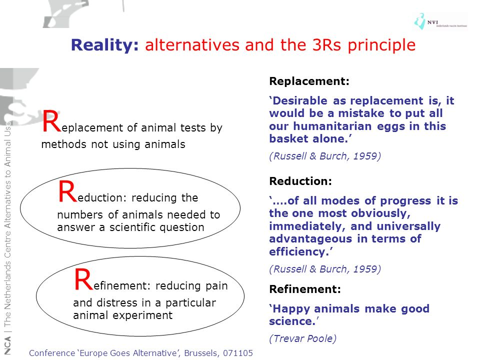 Reality: alternatives and the 3Rs principle