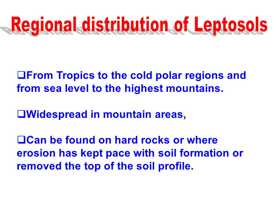 Regional distribution of Leptosols