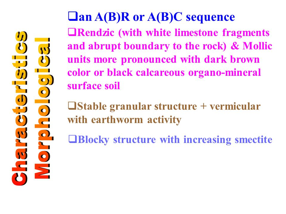 Characteristics Morphological an A(B)R or A(B)C sequence