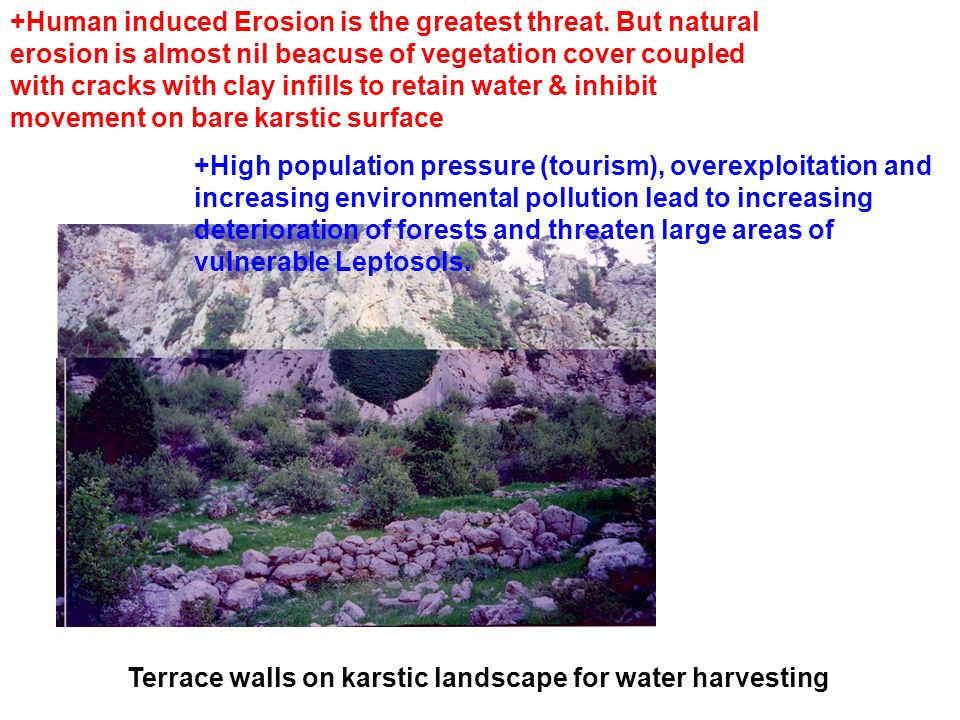 Terrace walls on karstic landscape for water harvesting