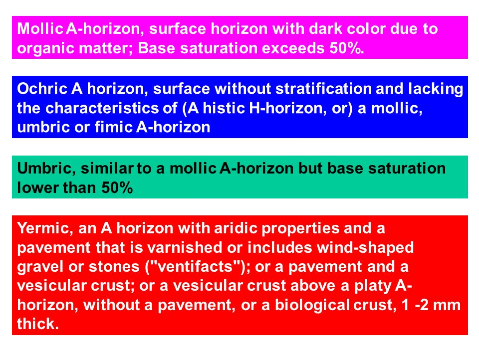 Mollic A-horizon, surface horizon with dark color due to organic matter; Base saturation exceeds 50%.