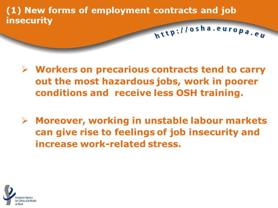 (1) New forms of employment contracts and job insecurity