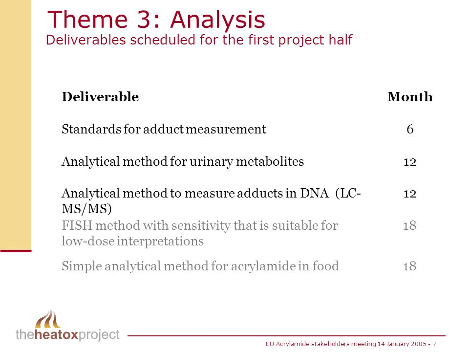 Theme 3: Analysis Deliverables scheduled for the first project half