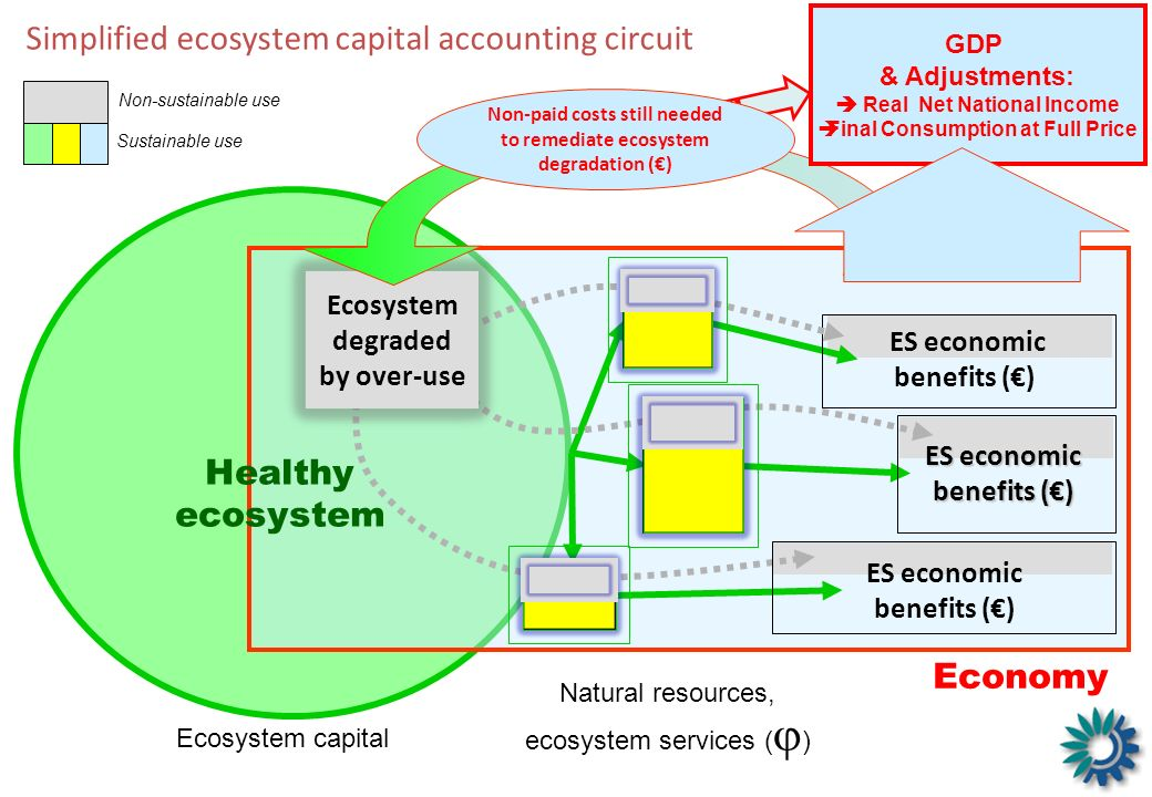 Simplified ecosystem capital accounting circuit