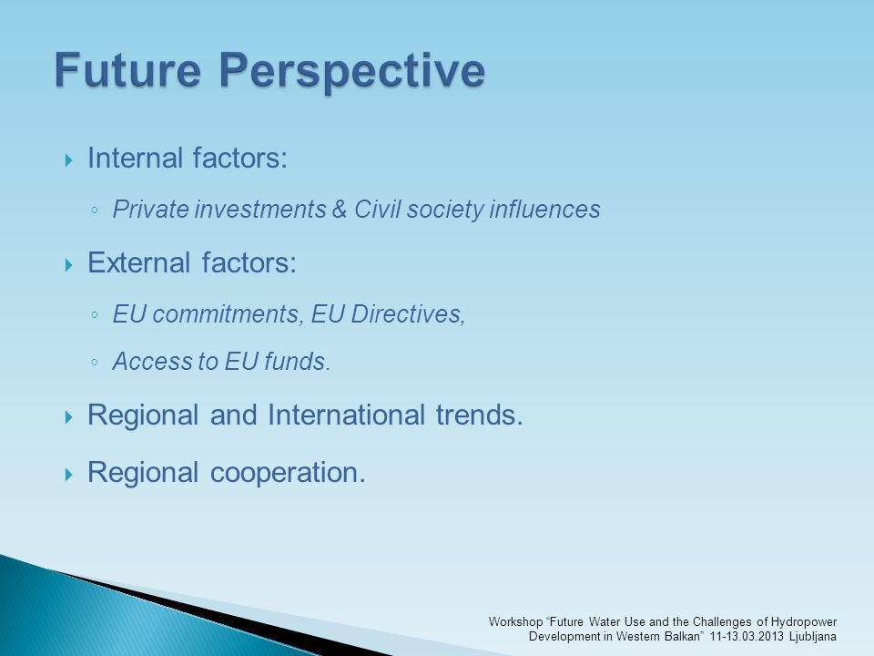 Future Perspective Internal factors: External factors: