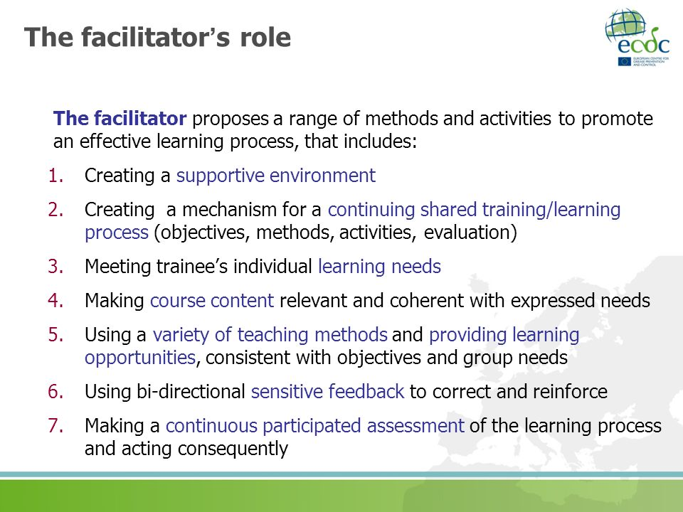 The facilitator's role
