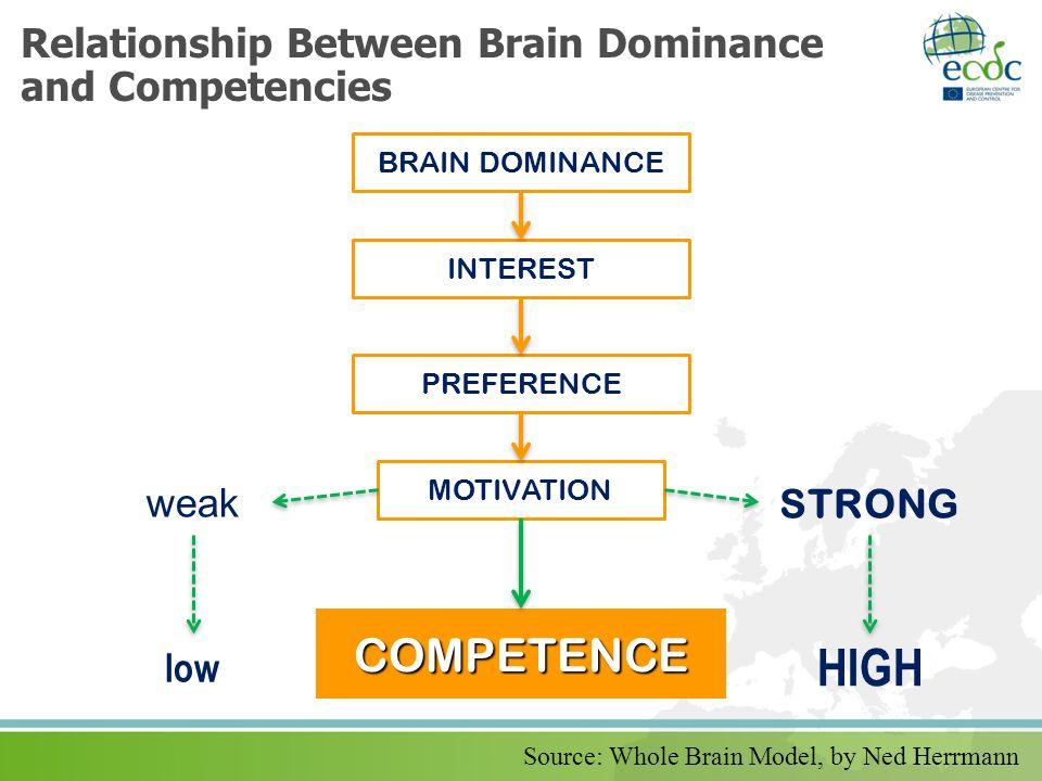 Relationship Between Brain Dominance and Competencies