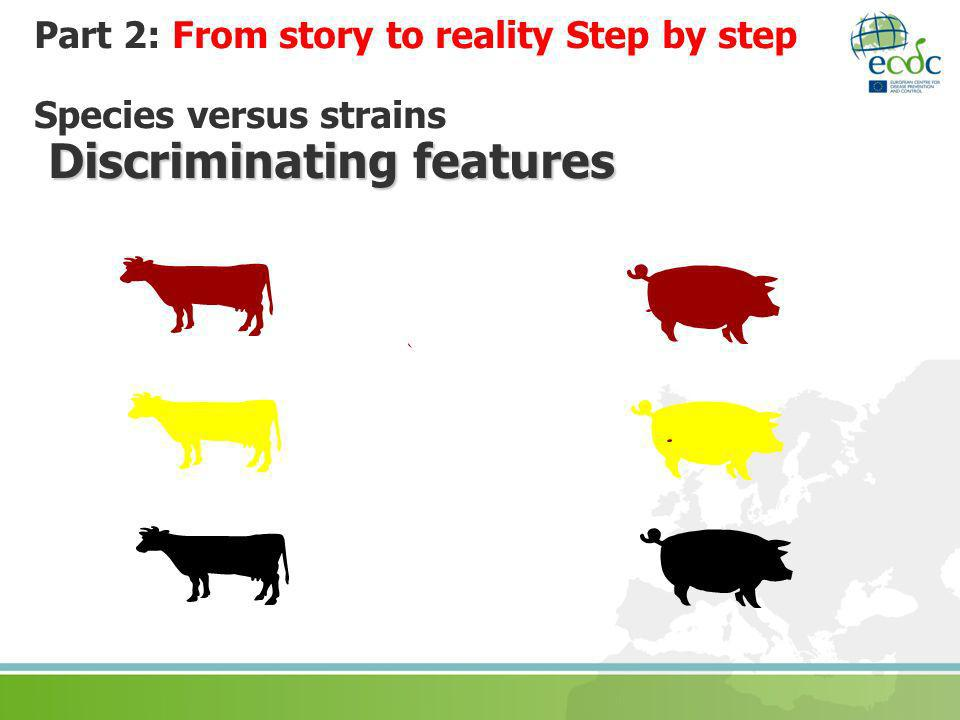 Part 2: From story to reality Step by step Species versus strains Discriminating features
