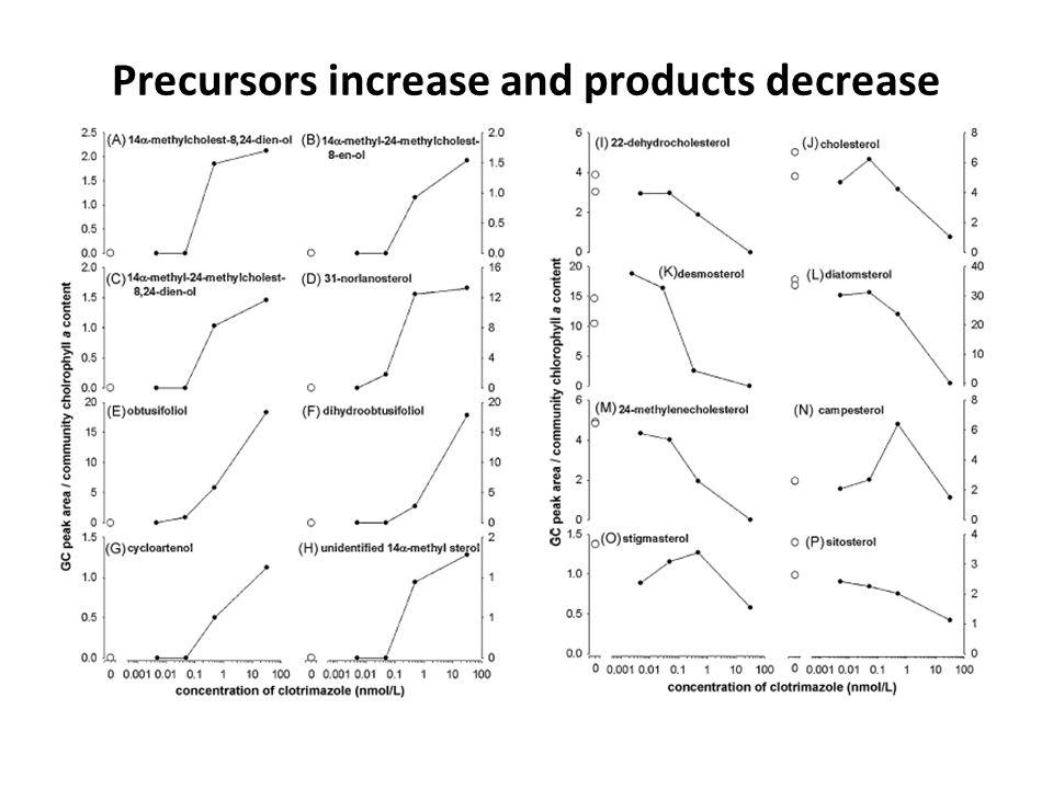 Precursors increase and products decrease