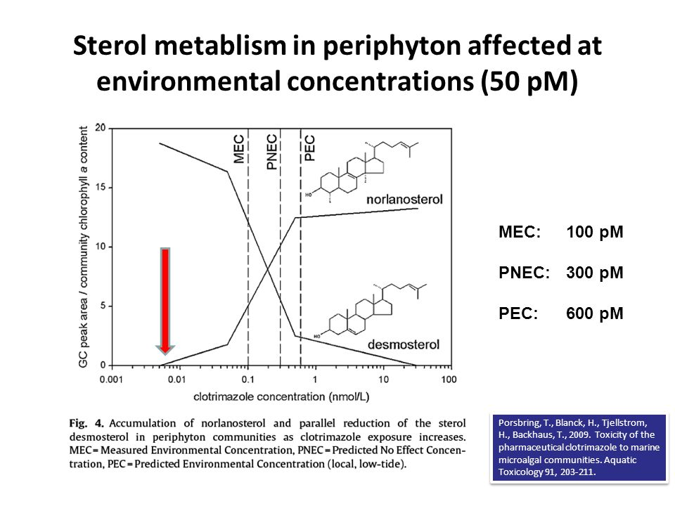 Sterol metablism in periphyton affected at environmental concentrations (50 pM)
