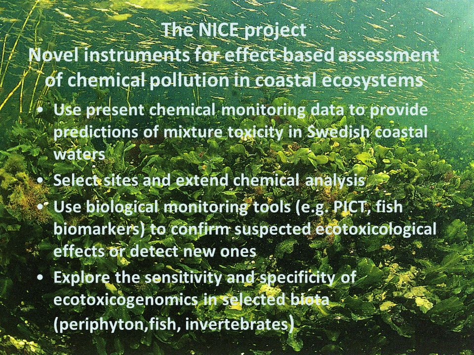 The NICE project Novel instruments for effect-based assessment of chemical pollution in coastal ecosystems