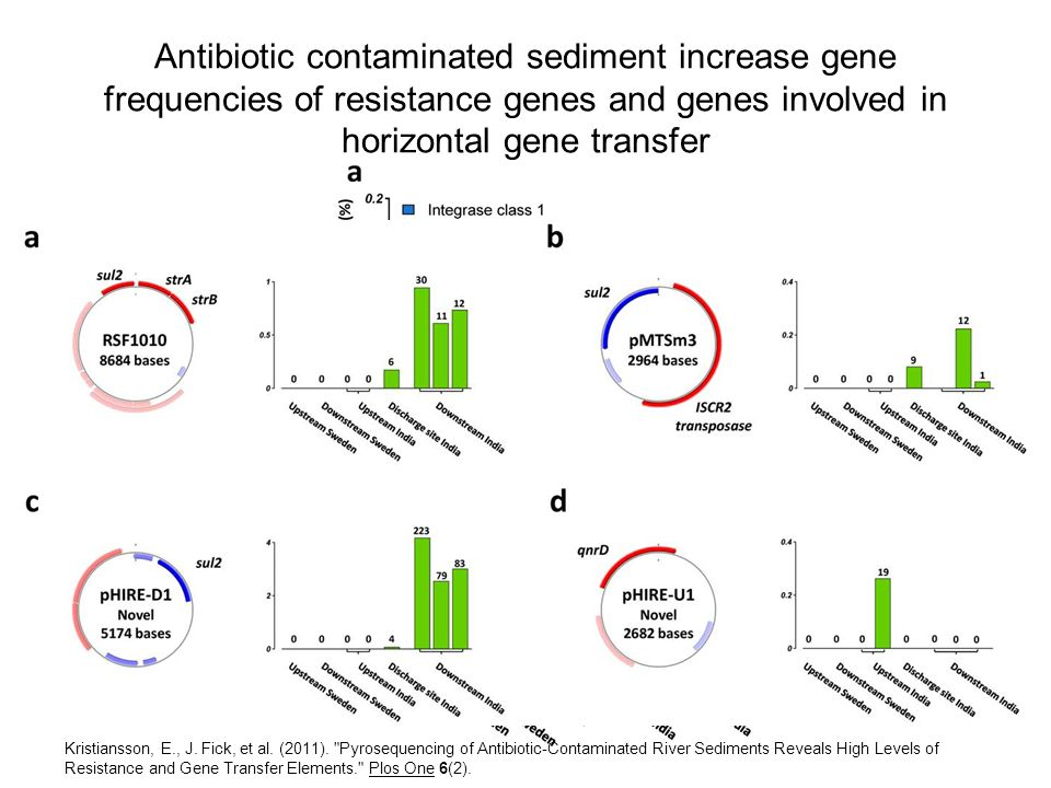 Antibiotic contaminated sediment increase gene frequencies of resistance genes and genes involved in horizontal gene transfer