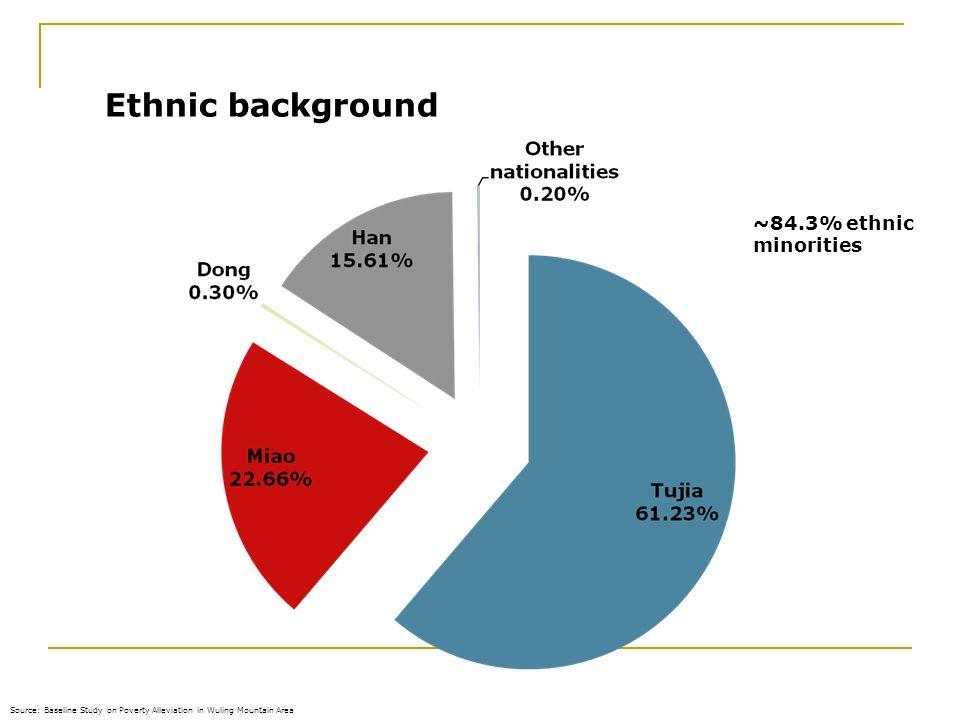 Ethnic background ~84.3% ethnic minorities 28.03.2017