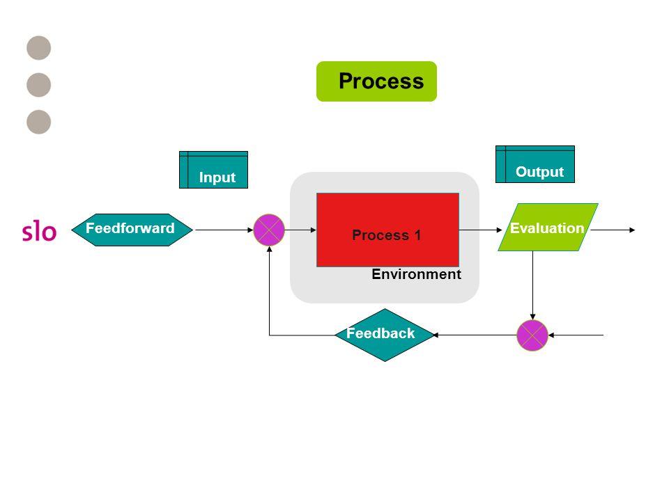Process Feedforward Output Input Evaluation Process 1 Feedforward