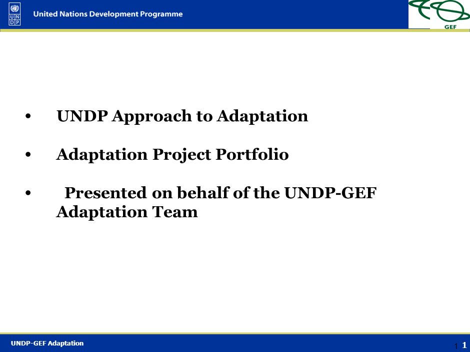 UNDP Approach to Adaptation
