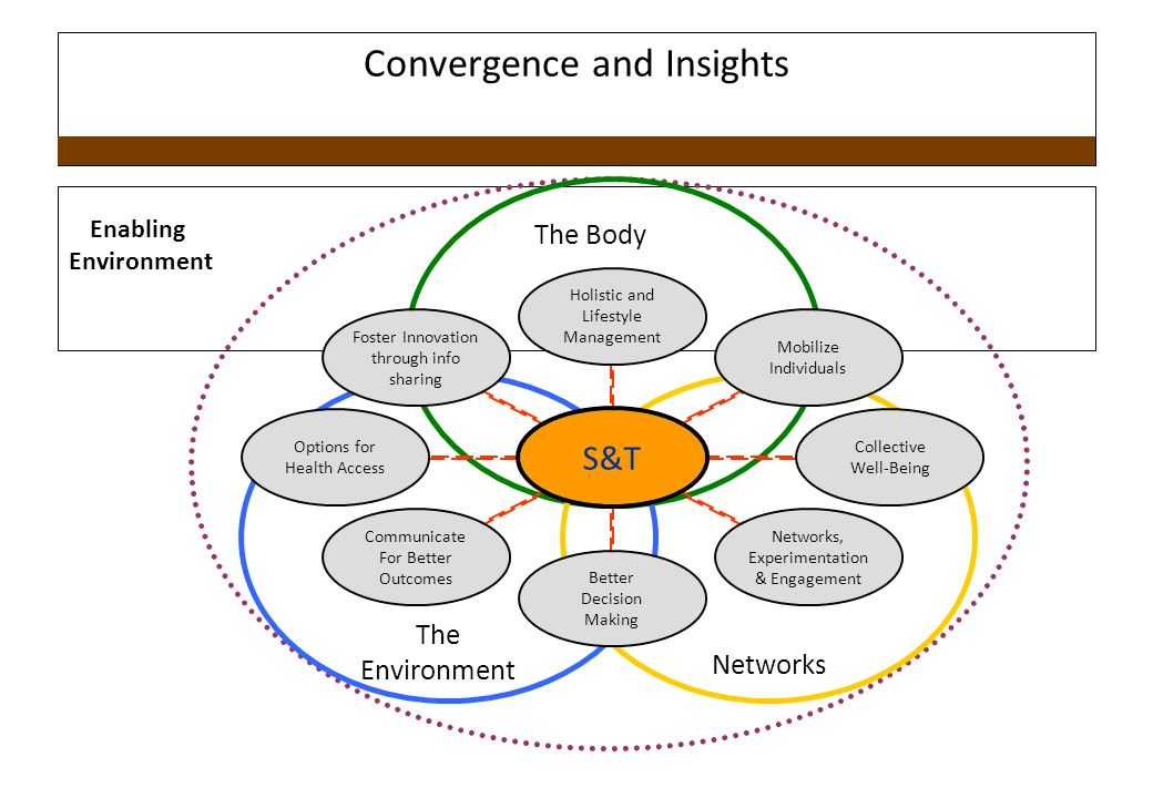 Convergence and Insights