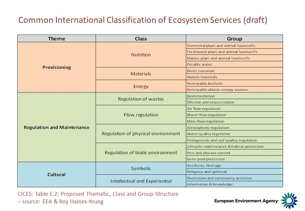 Common International Classification of Ecosystem Services (draft)