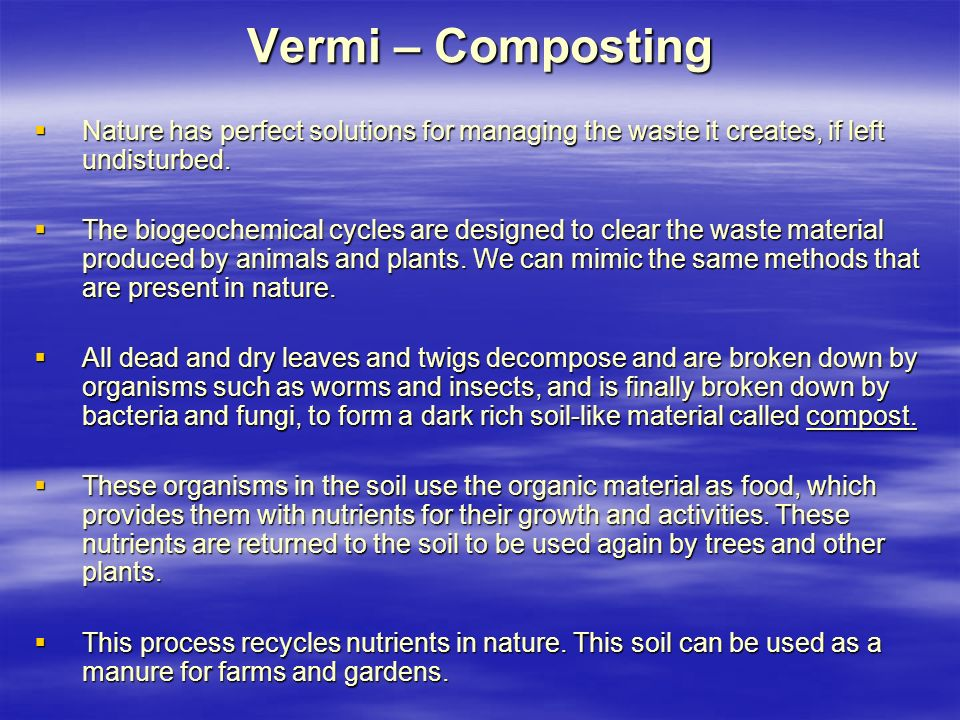 Vermi – Composting Nature has perfect solutions for managing the waste it creates, if left undisturbed.
