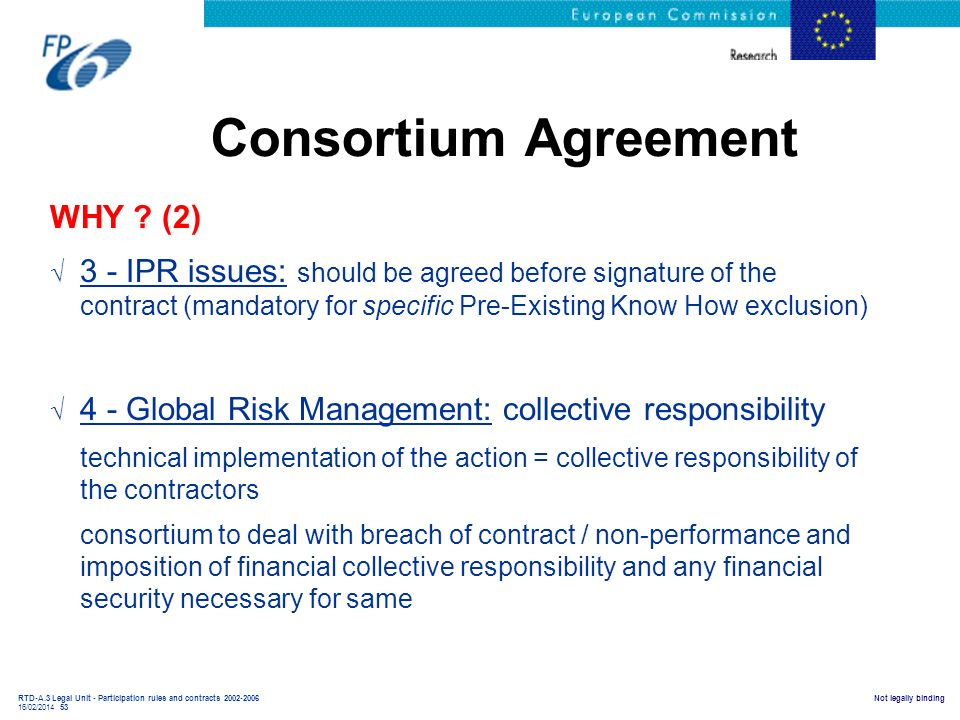 Consortium Agreement WHY (2)