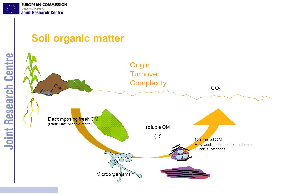 Soil organic matter Origin Turnover Complexity Corg CO2